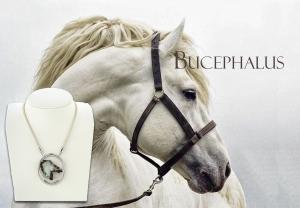 Jaime-Moreno-Art-in-Jewelry-Bucephalus-Poster